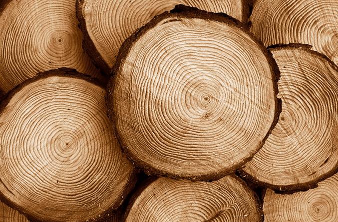 Mặt hàng duy nhất đạt kim ngạch xuất khẩu tăng trên mức 100% so với tháng trước đó là gỗ và sản phẩm gỗ